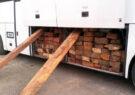 قاچاق چوب با شیوهای بیسابقه