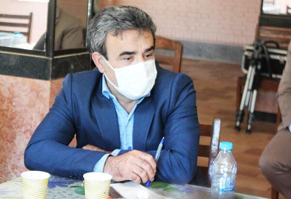 توسعه زراعت چوب در استان اردبیل شتاب میگیرد