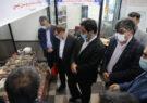 رونمایی از بزرگترین گلیم ایران به متراژ ۲۴ مترمربع در اردبیل