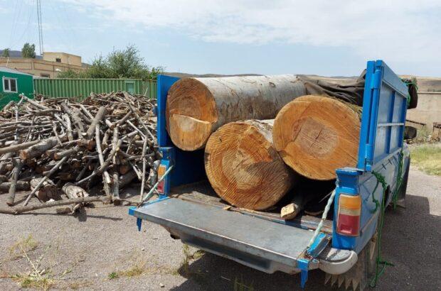 کشف ۲/۵ تن چوب جنگلی قاچاق در خلخال
